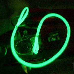 Toolbee Glow Worm lanyard